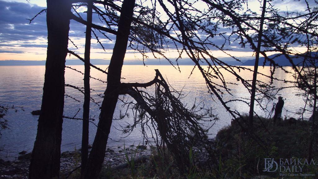 В Бурятии подсчитали колониальных и редких птиц