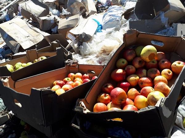 За год в Бурятии уничтожили более 3 тонн «санкционки»