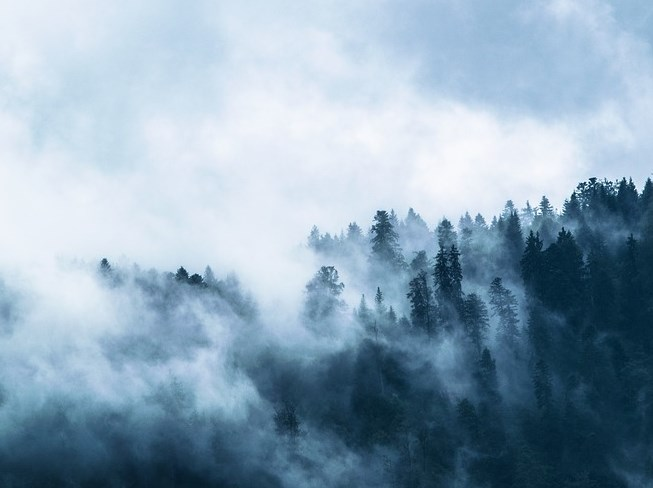 Дожди и туманы ожидаются в Бурятии