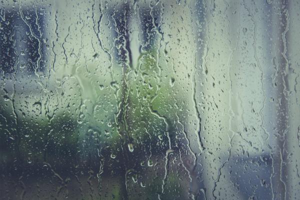 Гроза с дождём ожидаются в Улан-Удэ сегодня днём