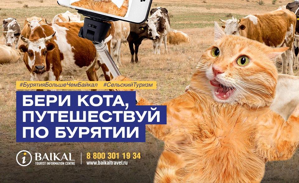В Бурятии дали свой ответ на скандал вокруг толстого кота