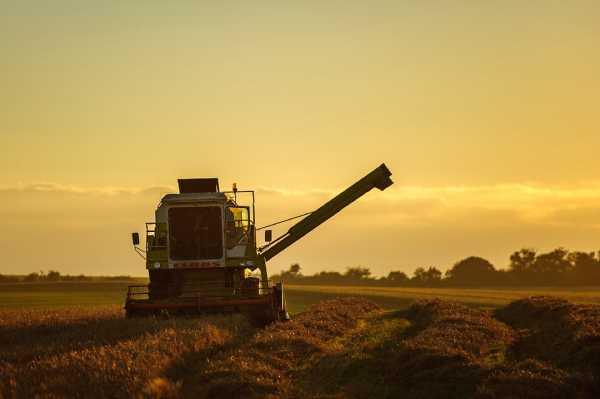 Уборка сельскохозяйственных культур началась в Забайкалье