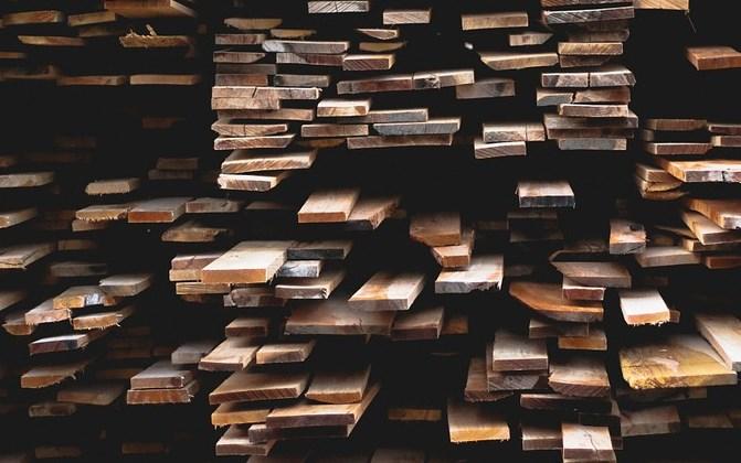 Бизнесмен незаконно устроил на Байкале пункт приёма древесины