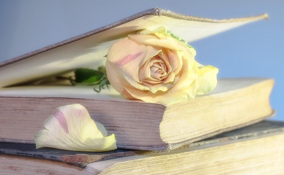 В Бурятии объявлена акция «Книги для малой родины»