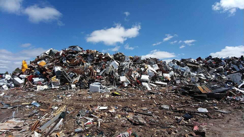 В Ангарске поставят фотоловушки на мусорящих
