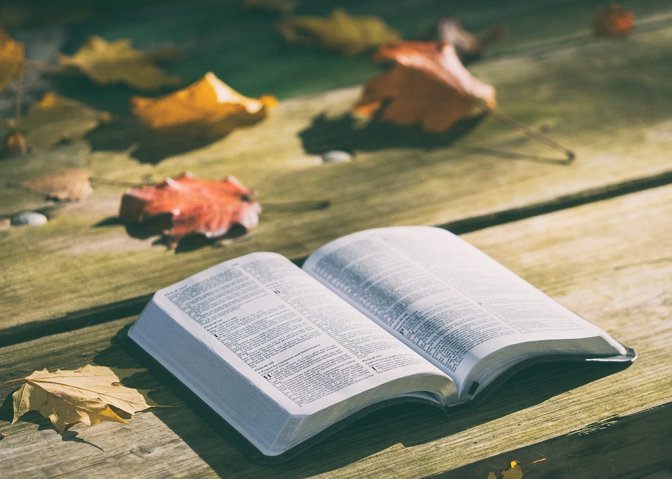 В библиотеках Агинского округа открылись книжные лавки