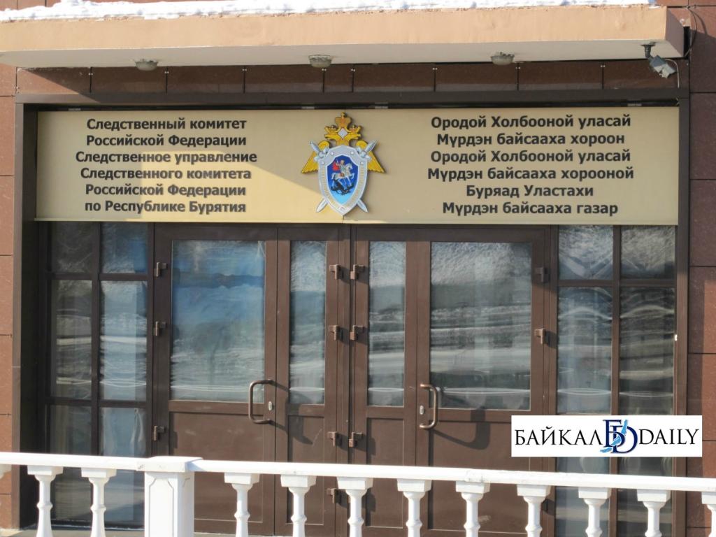В Улан-Удэ после нападения стаи собак на ребёнка возбуждено дело