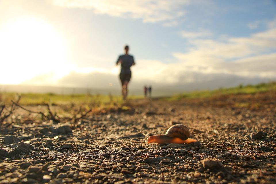 В Забайкалье пробегут осенний трейл «Самопревосхождение»