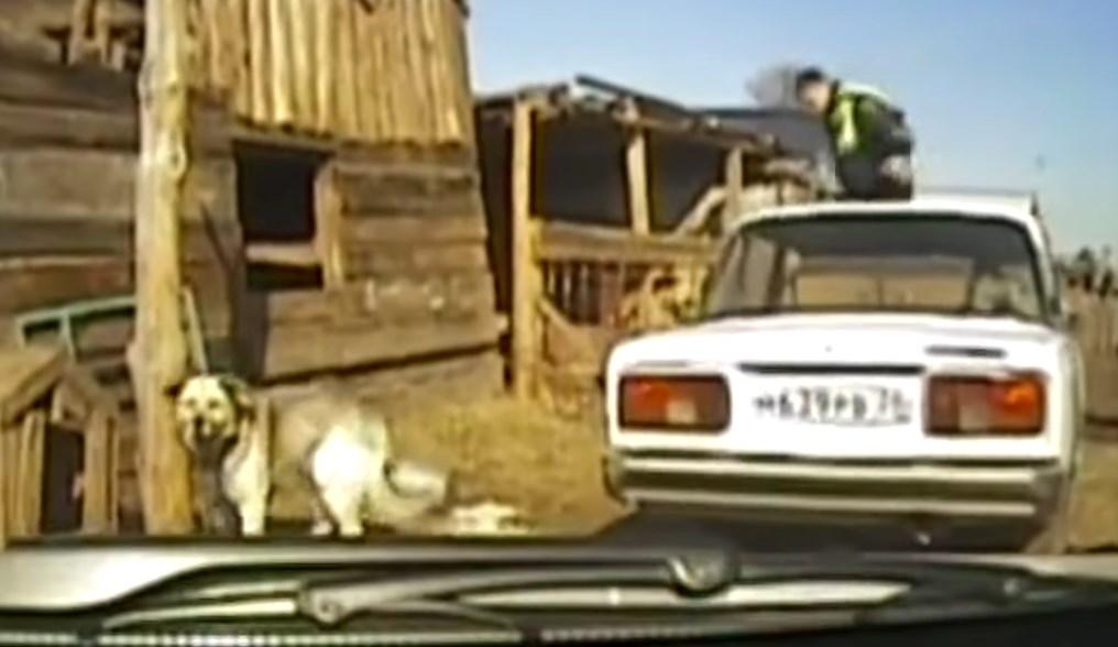 В Иркутской области устроили погоню за пьяным водителем «Жигулей»