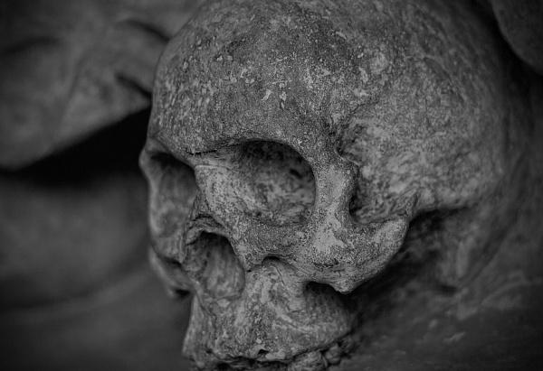 Улан-удэнцы сообщают о найденных на улице человеческих останках (фото 18+)
