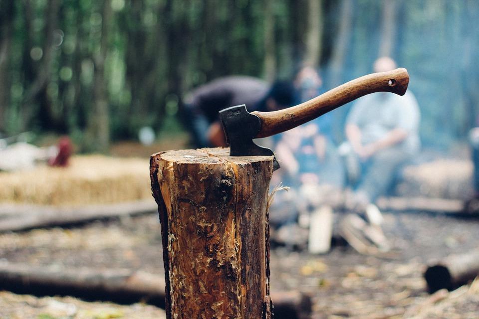 «Чёрный лесоруб» в Бурятии вырубил деревьев на 150 тысяч