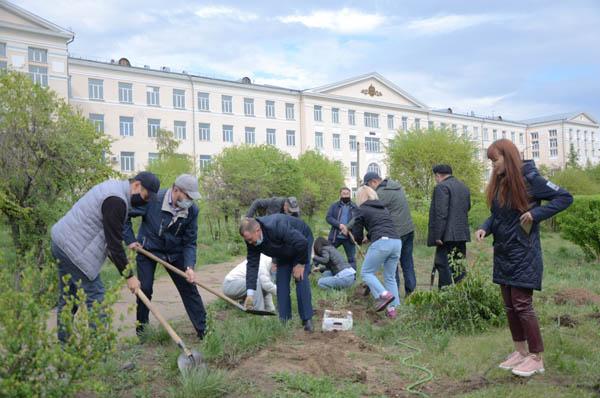 В Улан-Удэ высадили «Аллею Победы»