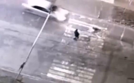 В Иркутской области поймали водителя, сбившего собаку