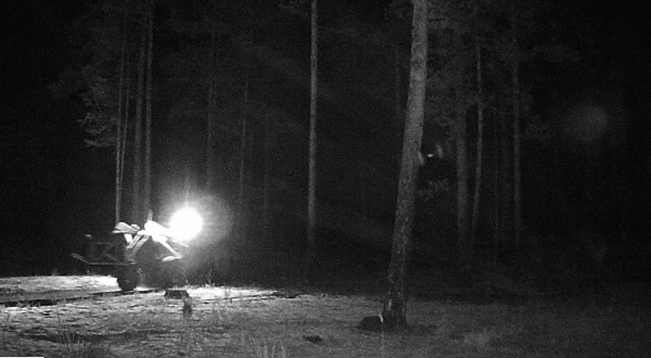 Мусорящих жителей Бурятии будут ловить фотоловушки