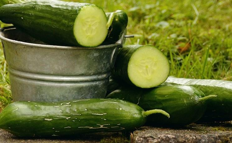 В Улан-Удэ сезонно подорожали овощи