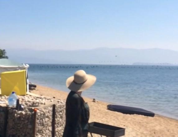 Жители Бурятии обеспокоены количеством бакланов на Байкале
