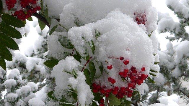 По северу Бурятии дождь и мокрый снег