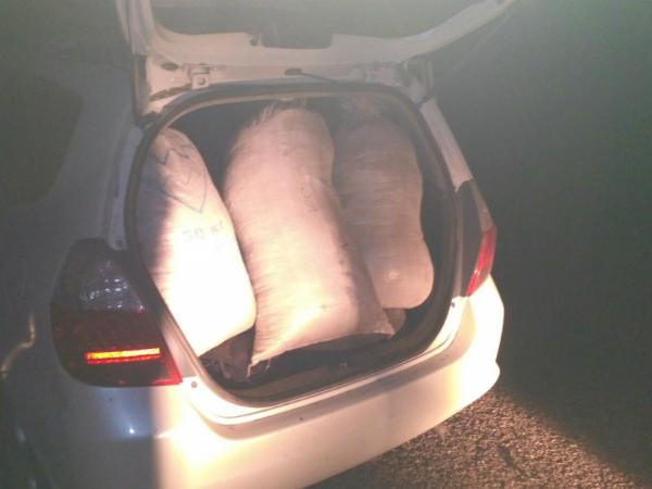 Забайкалец собрал 15 кг марихуаны в Бурятии