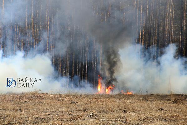 В Бурятии лесной пожар бушует недалеко от села