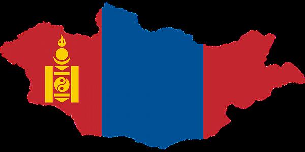 Кандидат отоппозиции победил напрезидентских выборах вМонголии
