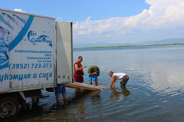 разводят девушку на озере